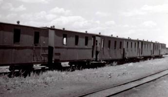 Line of 750mm gauge coaches