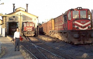 DE24264 (right), DE24185 (right), Elazig depot, June 2001. Photo G. Tunçbilek