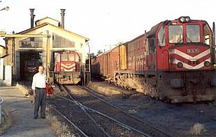 DE24264 (right), DE24185 (right), Elazig depot, June 2001. Photo G. Tunçbilek