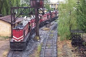 DE24393 (foremost) and a line up of unknown DE24000, Konya depot, October 2005. Photo G. Tunçbilek